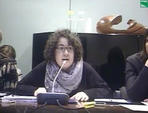 Manuela Rontini_in Commissione_audizione su emergenza maltempo