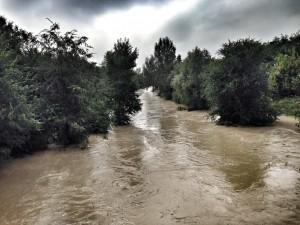 foto_fiume Lamone in piena