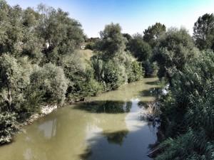 foto_fiume Lamone